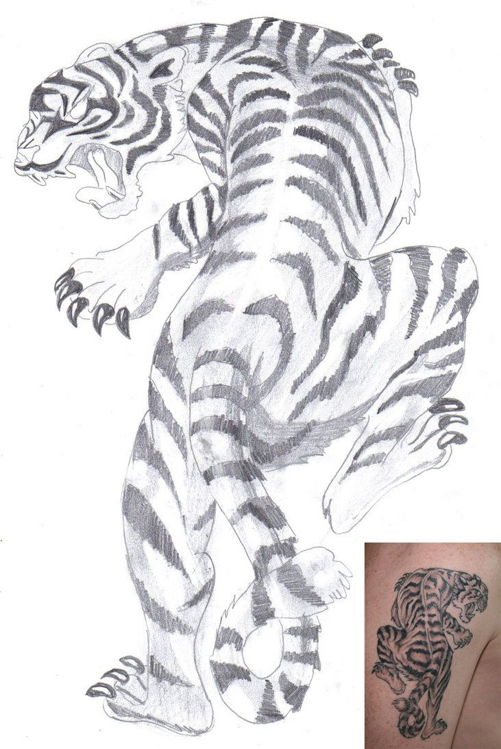 free tiger tattoo white tiger tattoo by aidan8500 on deviantart tattoo pinterest art. Black Bedroom Furniture Sets. Home Design Ideas