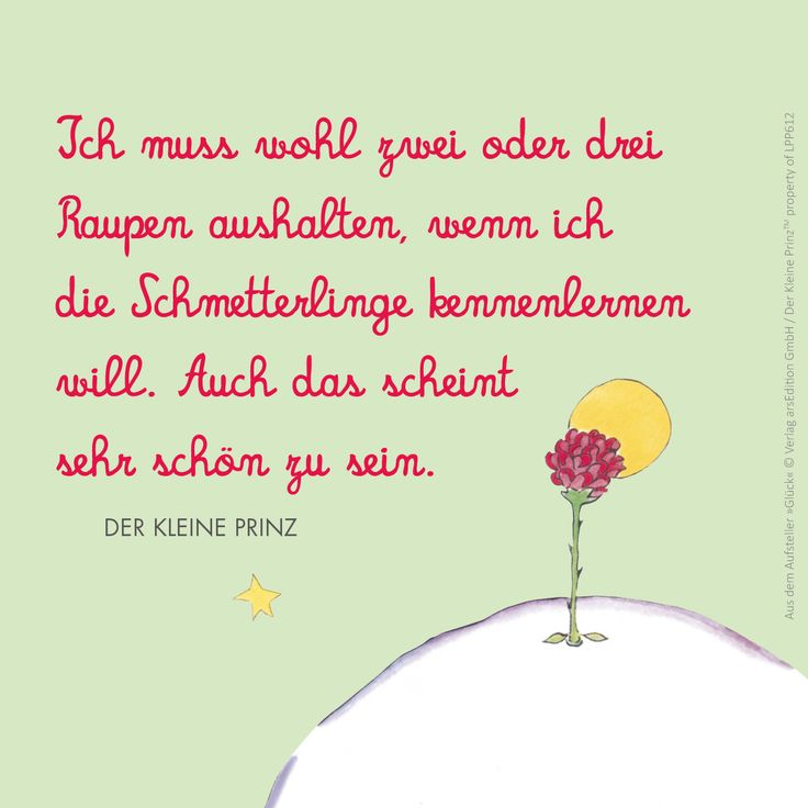Der kleine Prinz Le petit Prince The little Prince