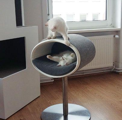 17 migliori idee su tiragraffi per gatti su pinterest for Tiragraffi per gatti ikea