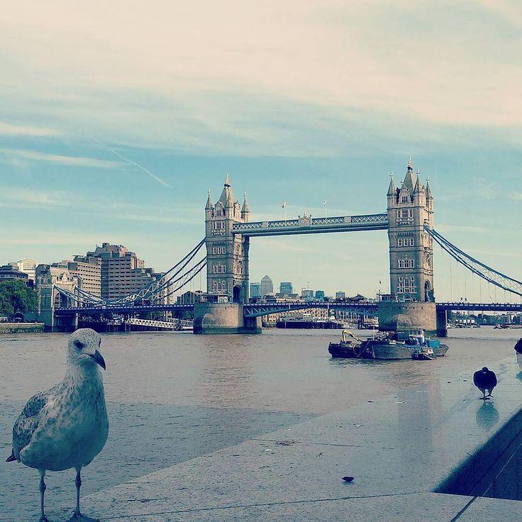 A very English postcard www.couchflyer.com #thames #towerbridge #england #london #tourist #tourism