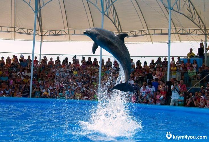 дильфинарии в Крыму