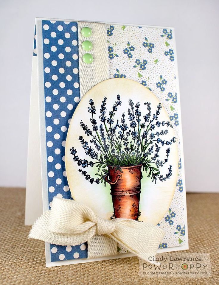 Cindy Lawrence: The Creative Closet - A Peaceful, Easy Feeling - 8/29/14 (Power Poppy: Lavender Stamp Set)