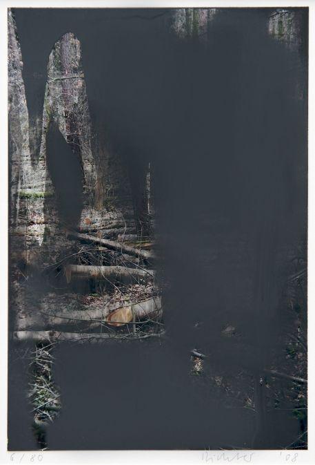 Gerhard Richter Forêt 2008