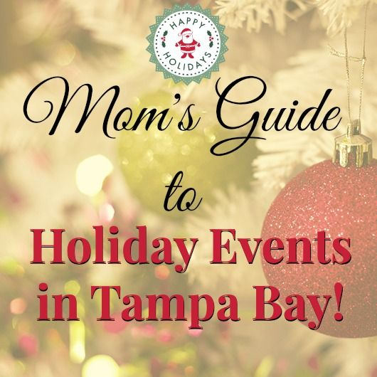 147 Best Images About Tampa Bay Area Fun On Pinterest