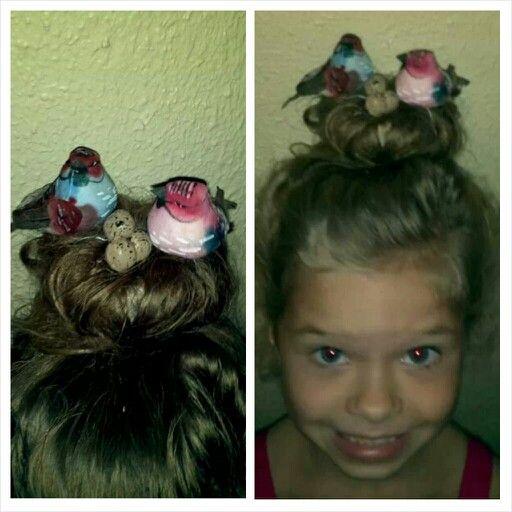 Crazy hair day at school. Birds in a nest.