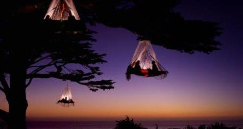 Coastal Tree Camping. Elk, CA: Bucketlist, Buckets Lists, Birds Nests, Extreme Natural, Designzeichnen Trees, Tree Camping, Coastal Trees, Dreams Locations, Trees Camps