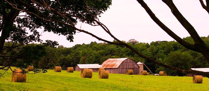 Uxbridge Farm - Uxbridge, Ontario