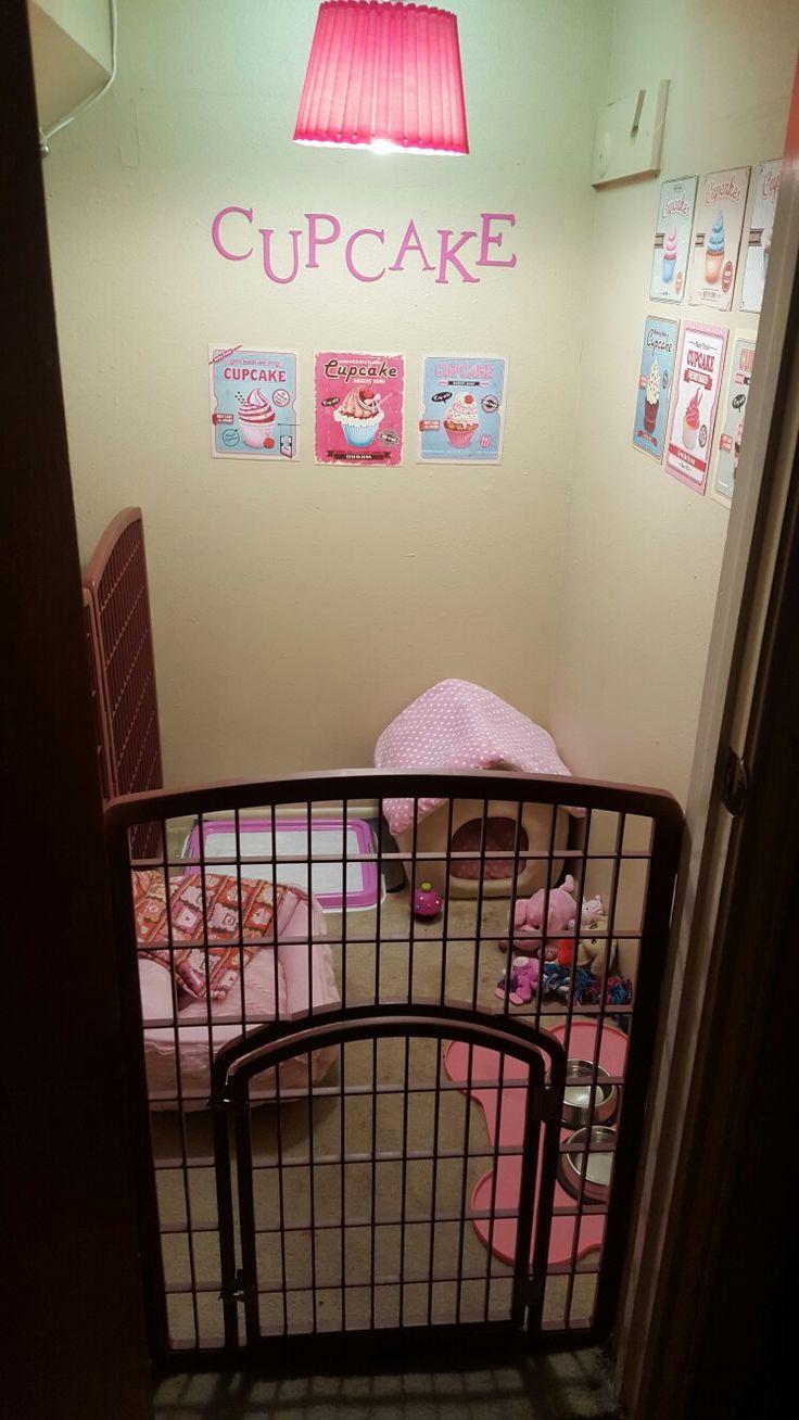 Best 25 Dog Under Stairs Ideas On Pinterest Dog Bed