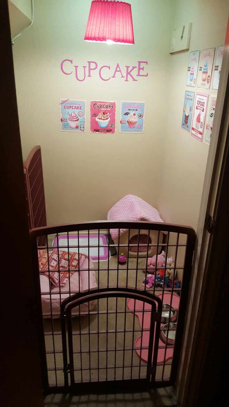 Pet bedroom ideas