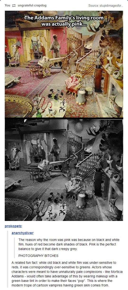 Some trivial tidbits about the Addams Family TV series