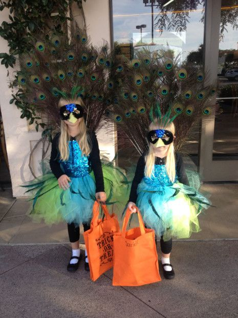 These are the peacock costumes I made for my kids last year for halloween.  They had a lot of fun with them and they got attention from everyone everywhere they went.  Visit rusticredfence.com for more information.