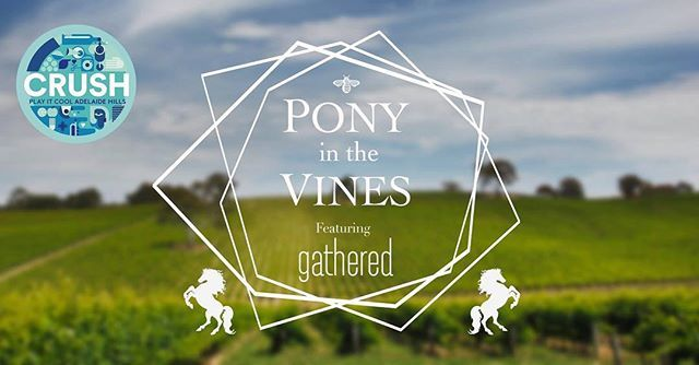 Celebrate Adelaide Hills Wine Regions CRUSH 2018 in style at @tomichwines!   This year Tomich have partnered with the wonderful team at @gatheredsa for the unique SA only local arts  crafts market. Add live music activations by the @adelaidefringe and Fringe Membership pony and hay bale rides wines amazing local food good vibes and great company and you have the makings of a great weekend!  27th & 28th January 10am - 5pm  #365daysofwine #365daysofwineandfood #sawine #sawinery…