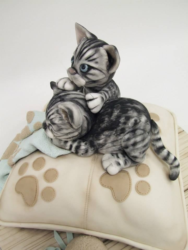 Edible Art, Cats on a Pillow Cake. ★ More on #cats - Get Ozzi Cat Magazine here >> http://OzziCat.com.au ★