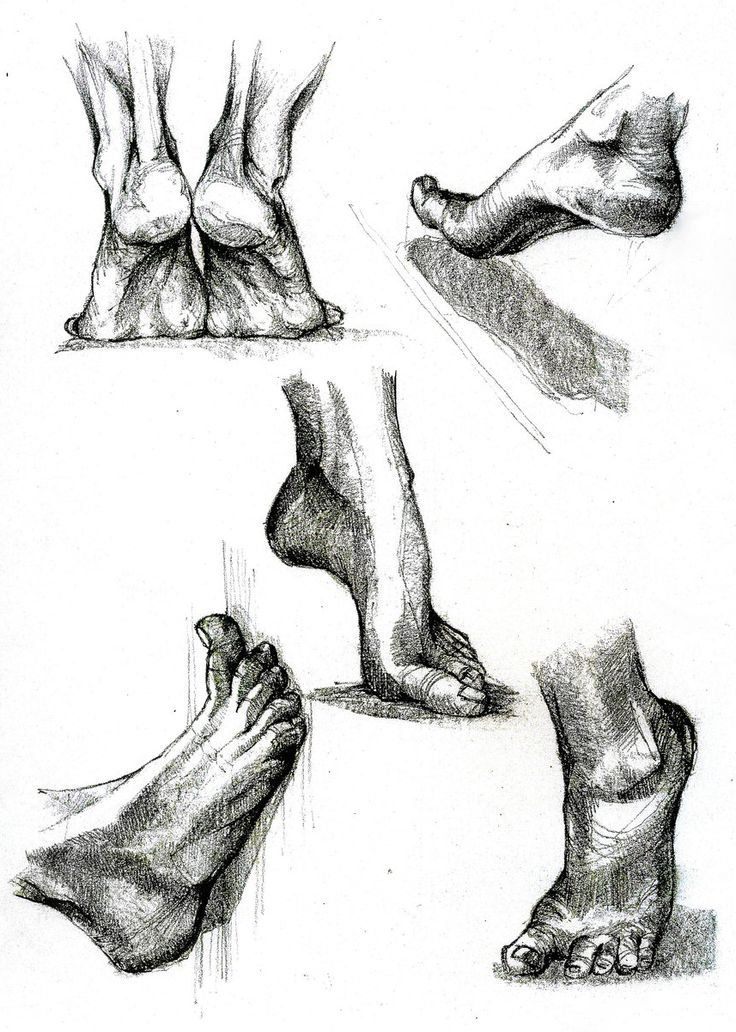 Hand and Foot Study on Behance
