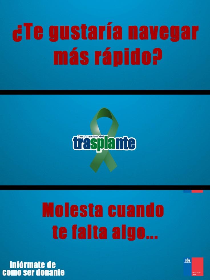 Corporación del Trasplante 2