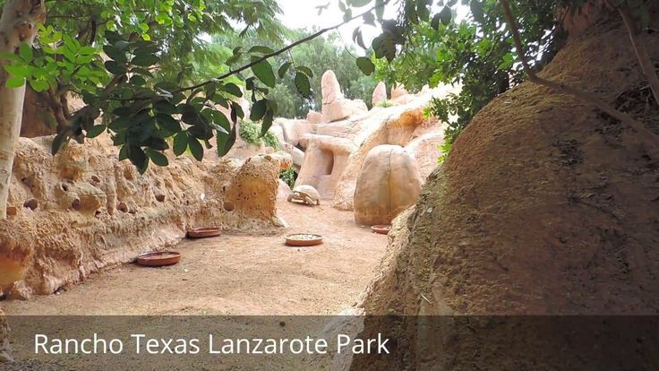 Places to see in ( Puerto Del Carmen - Spain ) Rancho Texas Lanzarote Park Rancho Texas Park is a zoo in Puerto del Carmen on the Canary Islands . The zoo has a Texan theme and thus refers to the founding of San Antonio by settlers from Lanzarote . Catch the Rancho Texas Lanzarote Park bus here from Playa Blanca. Entry fee about the normal for a wildlife park. and it is fair for what you will see in it . ( Puerto Del Carmen - Spain ) is well know as a tourist destination because of the…