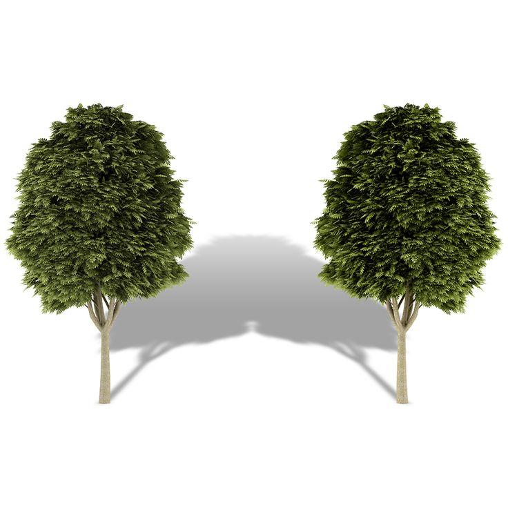 POESIA VISUAL núm. 216  http://www.poemesvisuals.com/2017/01/arbres-poesia-visual-num-216.html