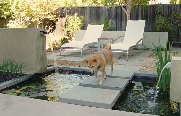 Kind of modern koi pond... I like it as a walkway to the pool area, or front door?