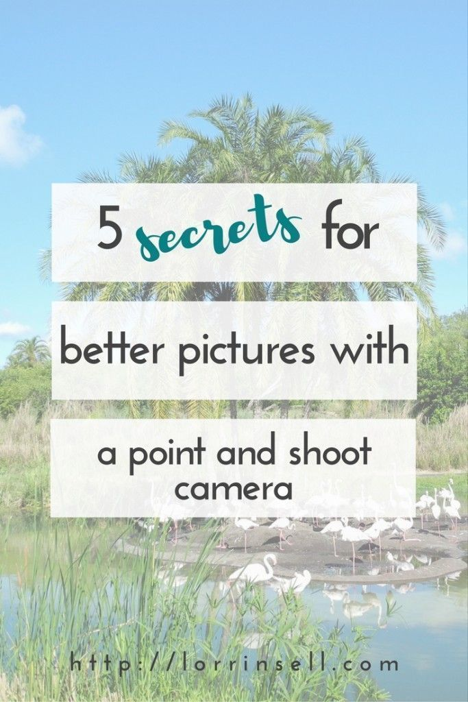 To Take Better Pictures - You can take great pictures of kids with your point and shoot camera with these tips. - To anybody wanting to take better photographs today