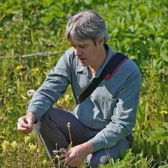 Alaskan Flower Essences Practitioner Workshop with Steve Johnson | Wonderworks