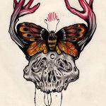 Un Teschio una Farfalla e un Cervo
