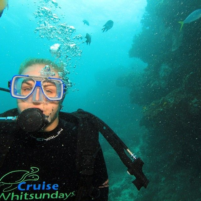 Tick that off the bucket list #greatbarrierreef #whitsundays #cruisewhitsundays #scubadive #dive #firsttimer