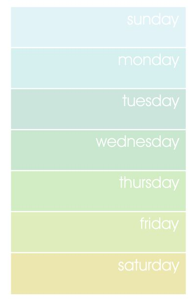 The 25+ best Printable weekly calendar 2016 ideas on Pinterest - free weekly calendar template