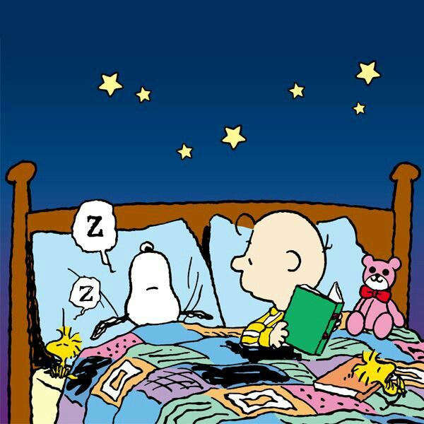 [Charlie Brown reading in a bed, with Snoopy and Woodstock sleeping]