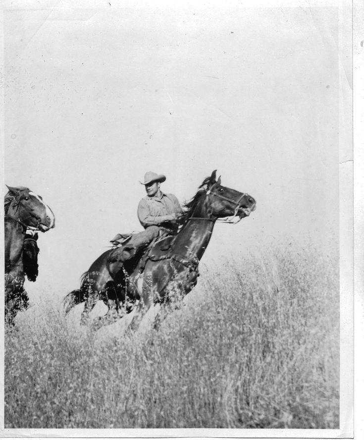 "COWBOY COLLECTION:""Cowboys and Horse"""