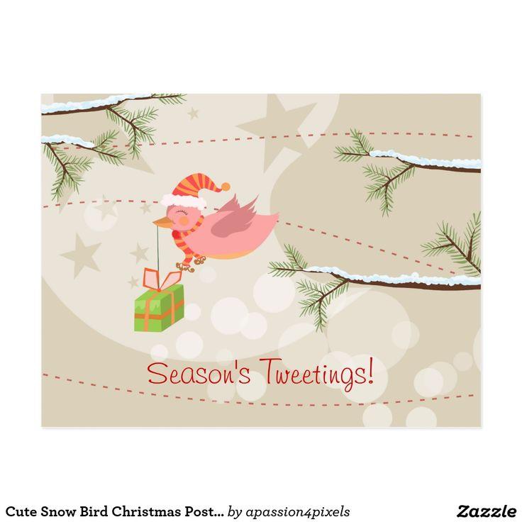 Cute Snow Bird Christmas Postcard