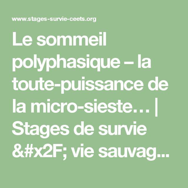 Le sommeil polyphasique – la toute-puissance de la micro-sieste… | Stages de survie / vie sauvage - CEETS