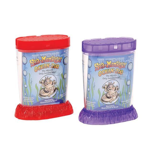 The Amazing Live Sea Monkeys Ocean Zoo Kit Sea Monkeys Monkey