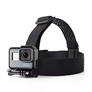 Amazon.com : AmazonBasics Head Strap Camera Mount for GoPro : Camera & Photo