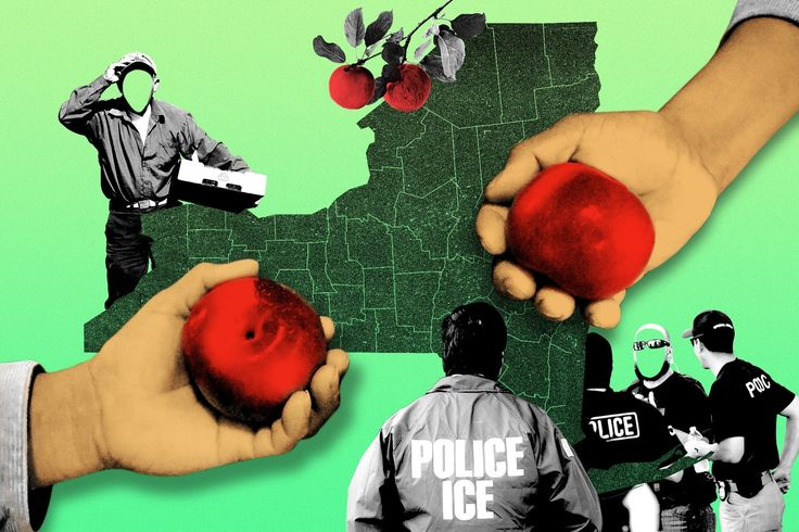 In upstate New York, both workers and the farmers who employ them are scared they won't survive aggressive immigration enforcement.