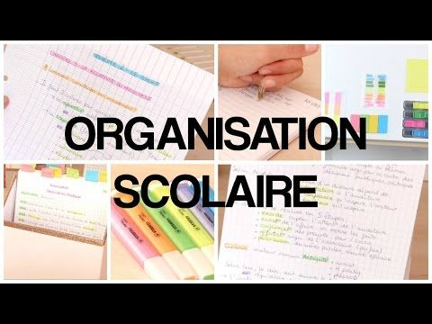 ORGANISATION SCOLAIRE - 1 - YouTube