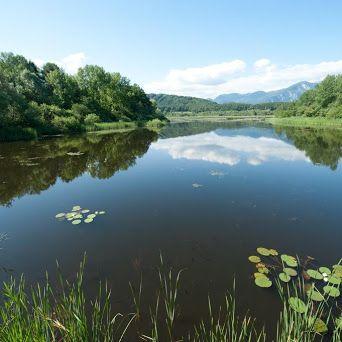 Tourismusregion Klopeiner See - Südkärnten – Google+  #klopeinersee #visitcarinthia #feelAustria #naturschutzgebiet #sablatnigmoor
