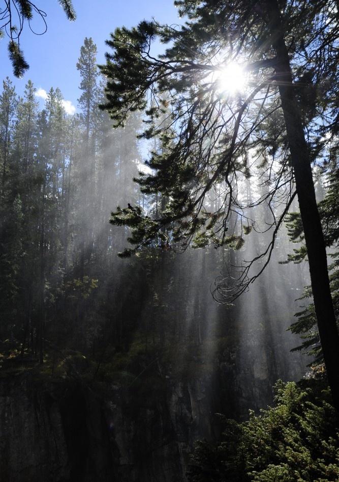 Spraying water of a nearby waterfall beautifully illuminated by the sun. Alberta, Canada.