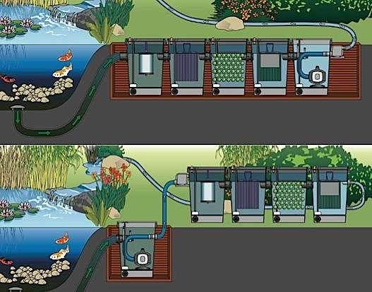 Les 25 meilleures id es de la cat gorie filtre pour bassin for Petite piscine naturelle