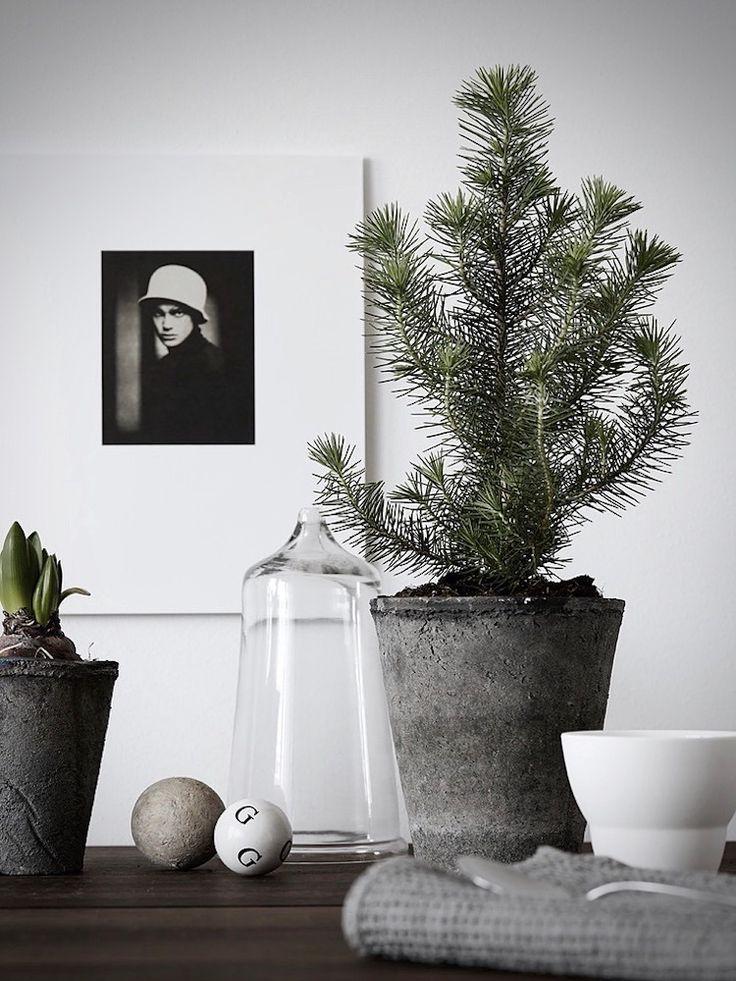 my scandinavian home: 5 beautifully, Minimalist Christmas Trees (Photo - Pella Hereby)