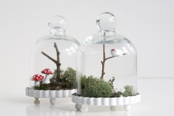 Woodland Terrarium | Ruffled These tiny terrariums are the sweetest. Though this project suggests making these as gifts for your wedding guests, if you cant afford to do that (though omigosh, I would love to get one of these at a wedding!) they would make gorgeous centre pieces for your tables. If youre making them for your wedding, you could even add some flowers similar to your bouquet or tie on a ribbon in your colour.