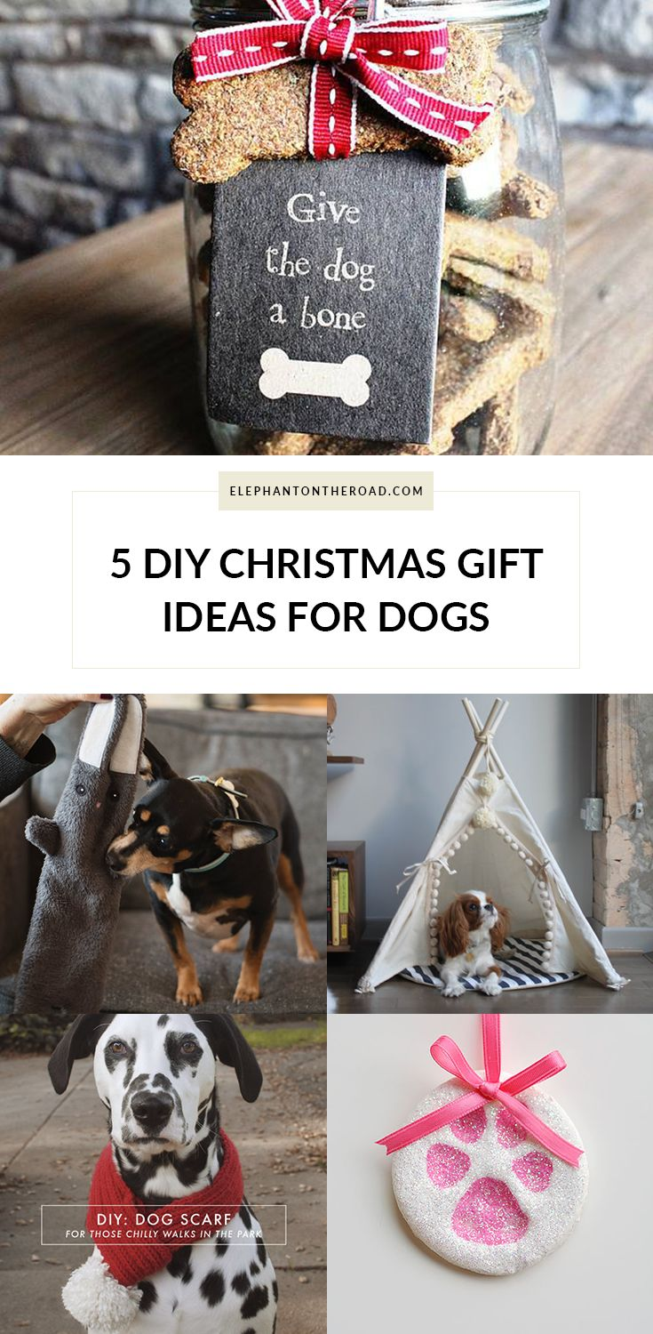 5 DIY Christmas Gift Ideas For Dogs. Blogmas. Elephant on the Road.