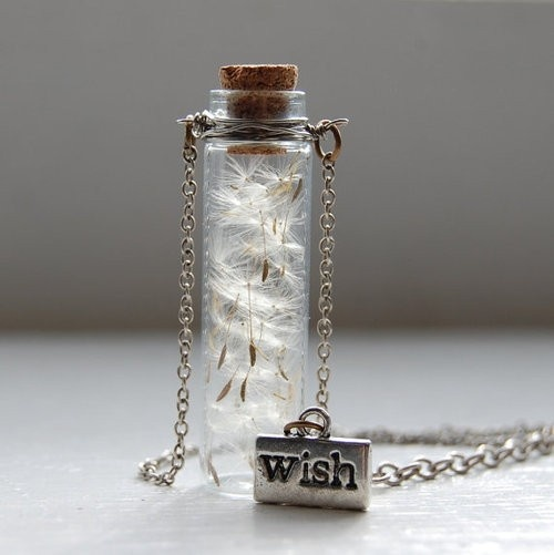 Portable wishes!: Makeawish, Dreams, Gifts Ideas, Make A Wish, Cute Ideas, Seeds, Dandelions, Jars, Bottle Necklaces