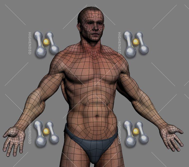 topology body - Buscar con Google