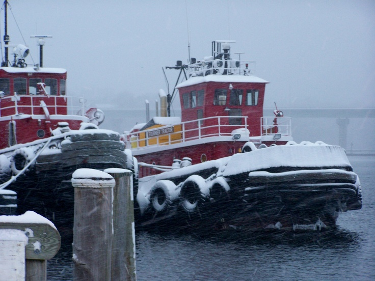 Tugs in Belfast, Maine Harbor | My Own Photography | Belfast maine, Maine, Tug Boats