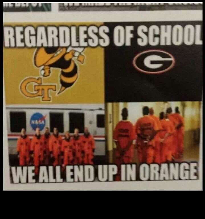 a45ce513503a3ff53af5c6d9b43c3f7f yellow jackets georgia 73 best to hell with georgia images on pinterest yellow jackets,Georgia Tech Memes