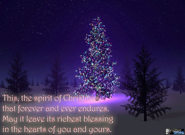 1000 Merry Christmas Wishes Quotes On Pinterest: 1000+ Images About Christmas Spirit On Pinterest