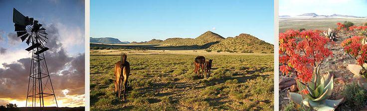 Hillston Farm -  Middelburg, Eastern Cape