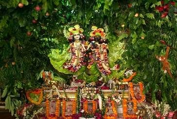 """Life is not about letting the storm to pass, rather it is the experience of dancing in the rain"""", these words correctly describe the principles basic to the auspicious festival of Hariyali"""
