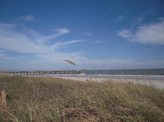 Charleston, SC: Isle of Palms beach