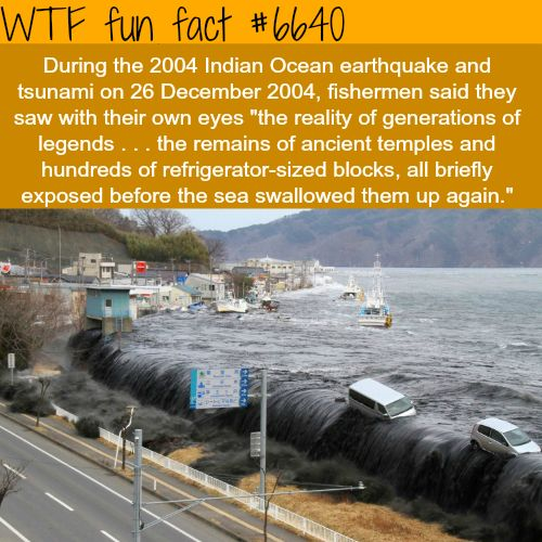 2004 tsunami - WTF fun facts